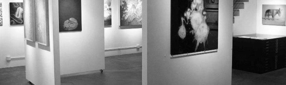 kolok_gallery_interior_juried07_lrg_0